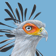 App Icon for Roberts Bird Guide 2 App in Czech Republic Play Store