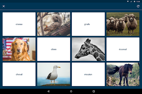 Quizlet Flashcards & Learning Screenshot 8