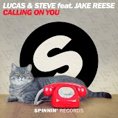 Calling On You (feat. Jake Reese)