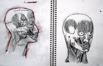 """Photo: Lateral Head 2012, Brenda Clews, each page: 27.9cm x 21.6cm, 11"""" x 8.5""""; graphite, charcoal, Waterman sepia ink on Fierro paper."""