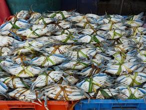 Photo: Crabs, el mercado, Puebla