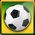 Jalvasco World Cup 2014 icon