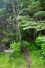 Photo: Beautiful scenic Shore Trail located in Brighton State Park by Wesley Morris