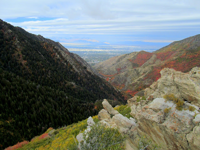 Salt Lake Overlook