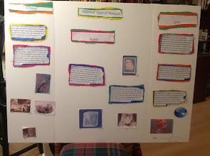 Photo: Jihad's poster for school about rocks. The border around the words were cut rugged on purpose, like rocks :-)