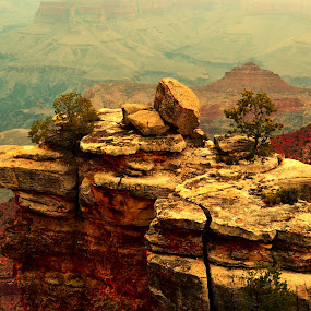 Grand Canyon by Peter Murnieks - Landscapes Mountains & Hills ( sky, grand, distant, plants, atmosphere, canyon, trees, day, storm, landscape, rocks )