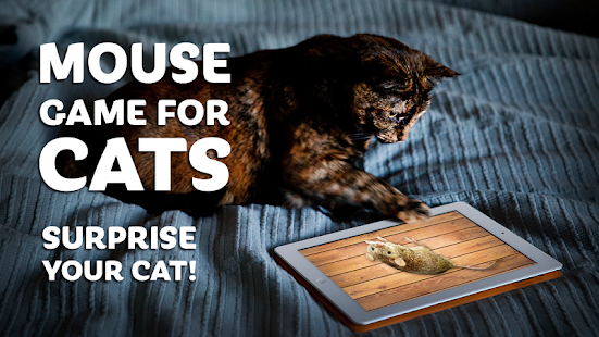 Kediler için fare oyunu Ekran Görüntüsü