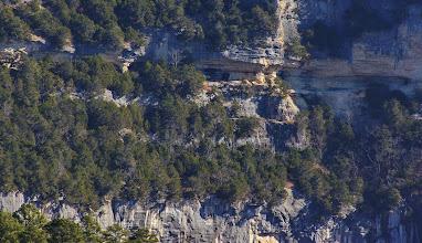 Photo: Big Bluff, goat trail