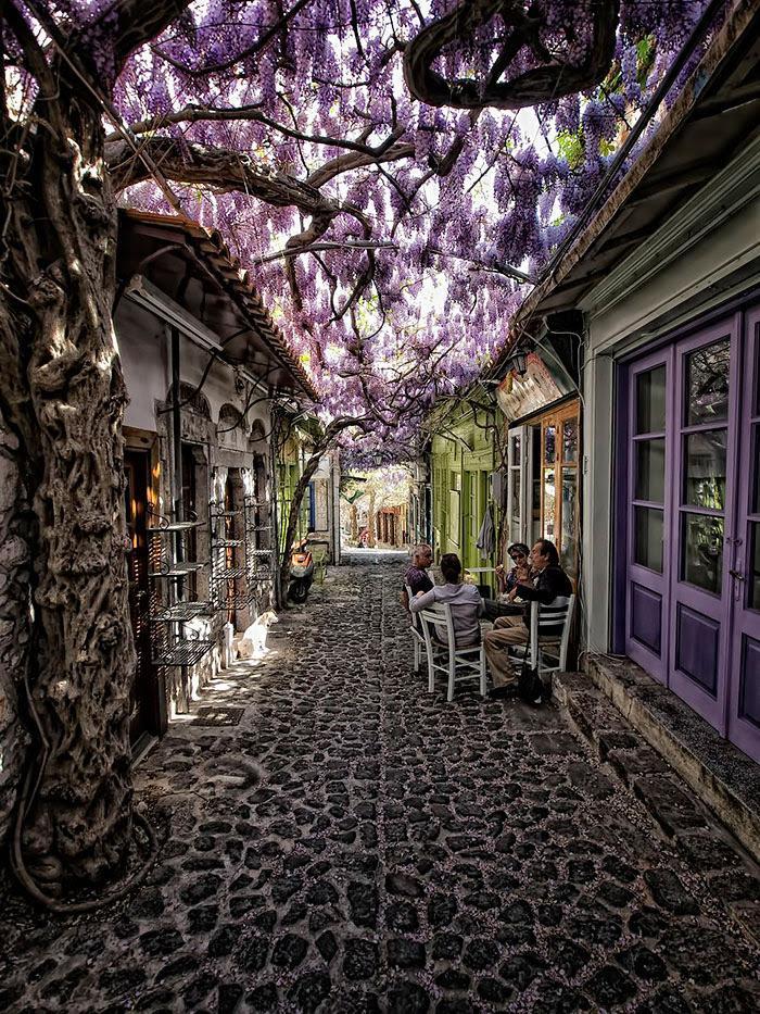 Molyvos, Lesvos, Greece, con đường hoa