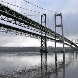 Narrows Park by Tesla K Levine - Buildings & Architecture Bridges & Suspended Structures ( #narrowspark, #tacoma, #tacomanarrows )