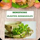 Propiedades PlantasMedicinales APK