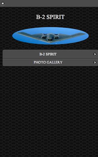B-2 隐形轰炸机 免费