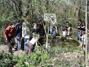 Photo: présentation suivi d'amphibiens
