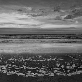 Beach story by Ritwik Ray - Landscapes Beaches ( waves, nature, beach, monochrome, landscape,  )