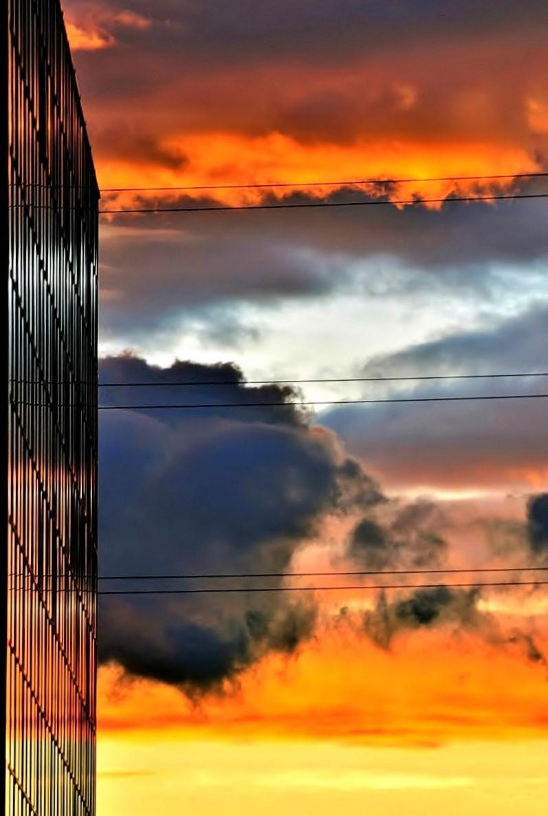 Dalla mia finestra... di ely50