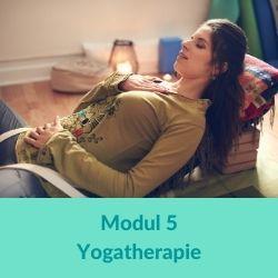 Restorative Yoga Modul 5