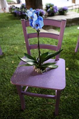 Purple di black&blue2708