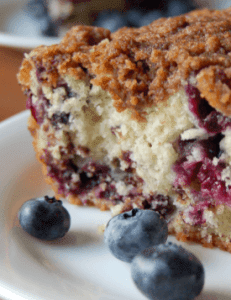 Blueberry Streusel Coffee Cake | nuwave oven recipe - Desserts -4