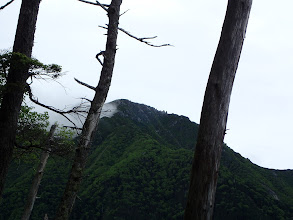 三ノ沢岳が近くに