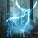 Adventure of the young wizard Quest icon