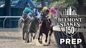 Belmont Stakes Prep thumbnail