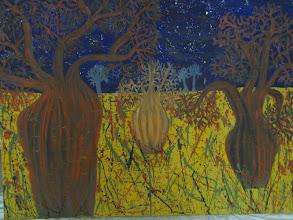 Photo: Boab Tree Oil 120cmx90cm $400