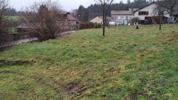 terrain à Fremifontaine (88)