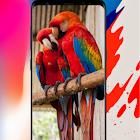 HD Wallpaper - HD Wallpapers Backgrounds 2021