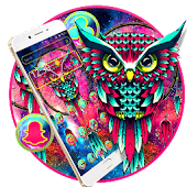 Moon Owl Colorful Galaxy Theme