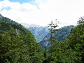 Photo: Blick ins  900 ( !!! ) Meter tiefer gelegene SOCA -Tal.