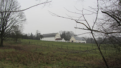 Photo: Kasteelhoeve Lindenhof in Neerijse,  rustoord voor oude paarden
