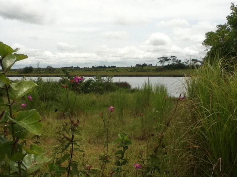 Photo: Le lac bleu près de Dolisie
