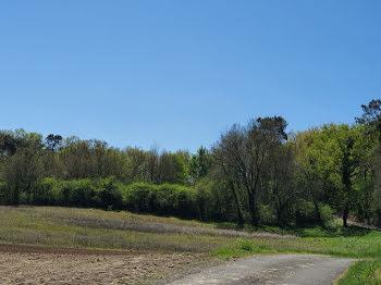 terrain à Orignolles (17)