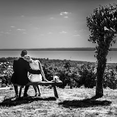 Wedding photographer Bence Molnár (feelusion). Photo of 07.07.2014