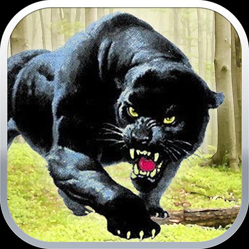 Black Panther Sniper Shooter