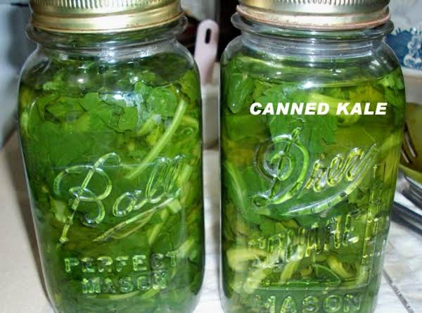 Canned Kale