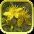 Лекарственные растения беспл. file APK for Gaming PC/PS3/PS4 Smart TV