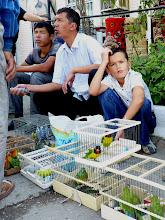 Photo: die Vogelhändler