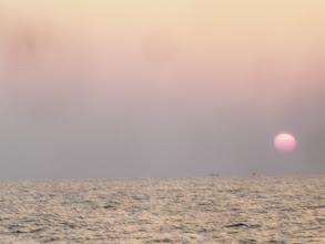 Photo: 太陽も昇った。