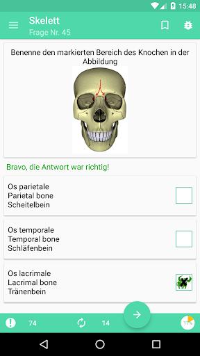 aBones - Skelett Knochen APK download | APKPure.co