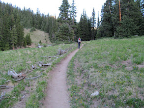 Photo: Lower part of the trail following an old road