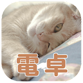 Cute cat calculator -Free app-