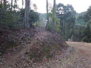 林道出合から次の登りへ