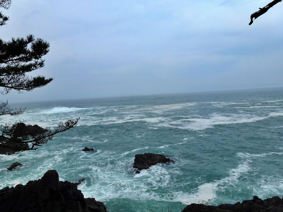 漁り火岬の風景(北側)
