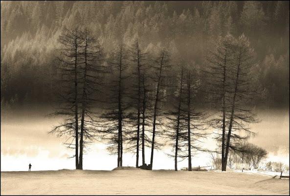 Neve e nebbia di gioviben