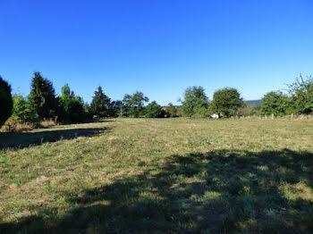 terrain à Saint-Priest-Ligoure (87)