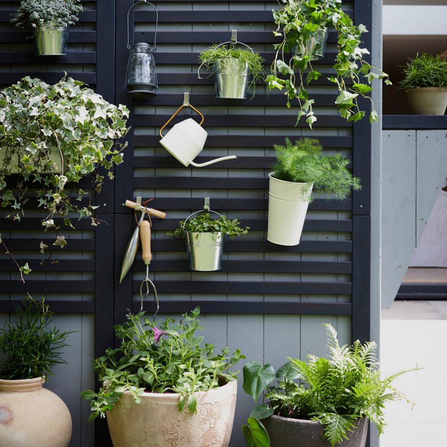 Best Ideas How to Manage the Garden at a Small Space, Latest News Adda