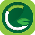 Green Community Laundry Icon