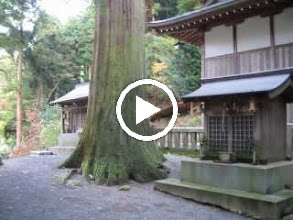 Video: 惣王神社(黒滝)