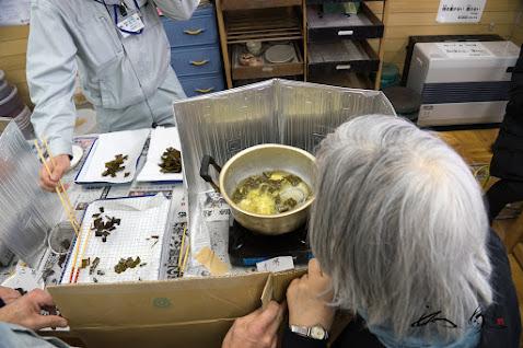 昆布の素揚げスナック作り体験